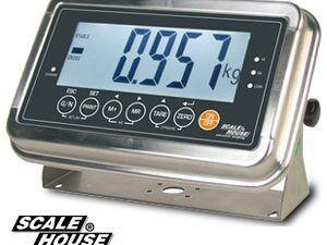 ILWI serijos daugiafunkcinis svorio indikatorius